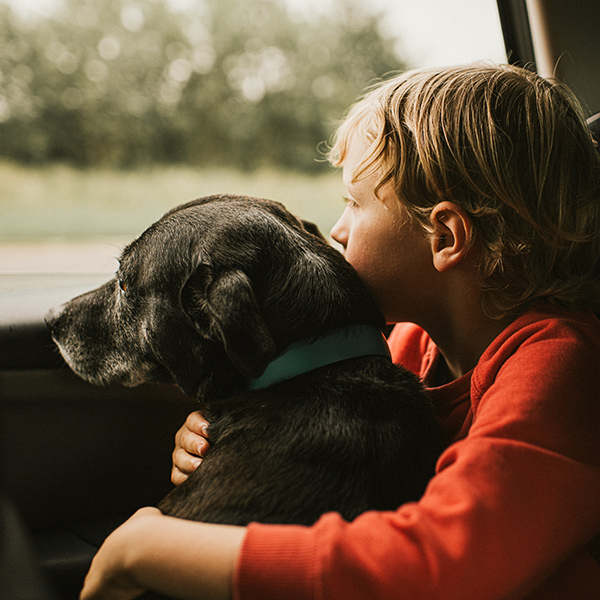 Boy hugging a black dog on his lap looking out of the window of a driving car